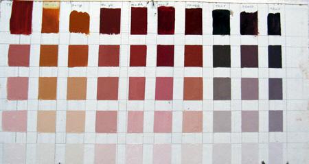 colorstudyterrarosaw