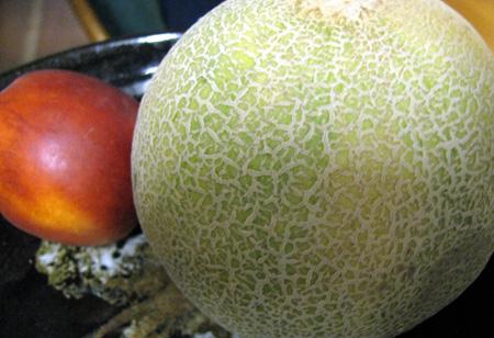 fruitscantalope