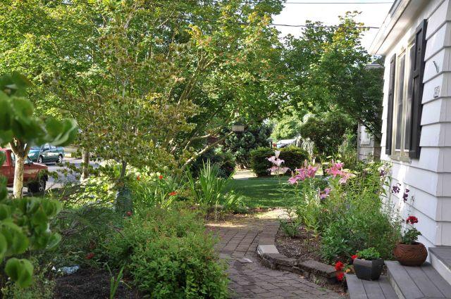 front garden july blog